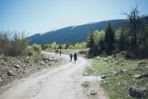 A trail with five hikers