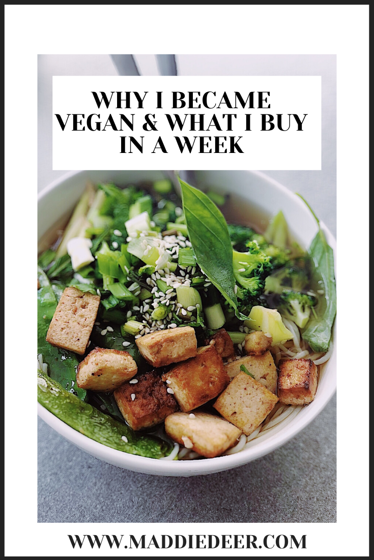 Why I became vegan and what I buy in a week