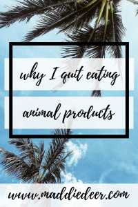 Why I quit eating animal products