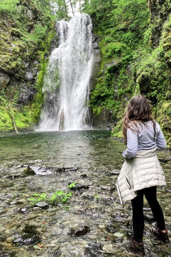 Best Hikes in the Gifford Pinchot National Forest