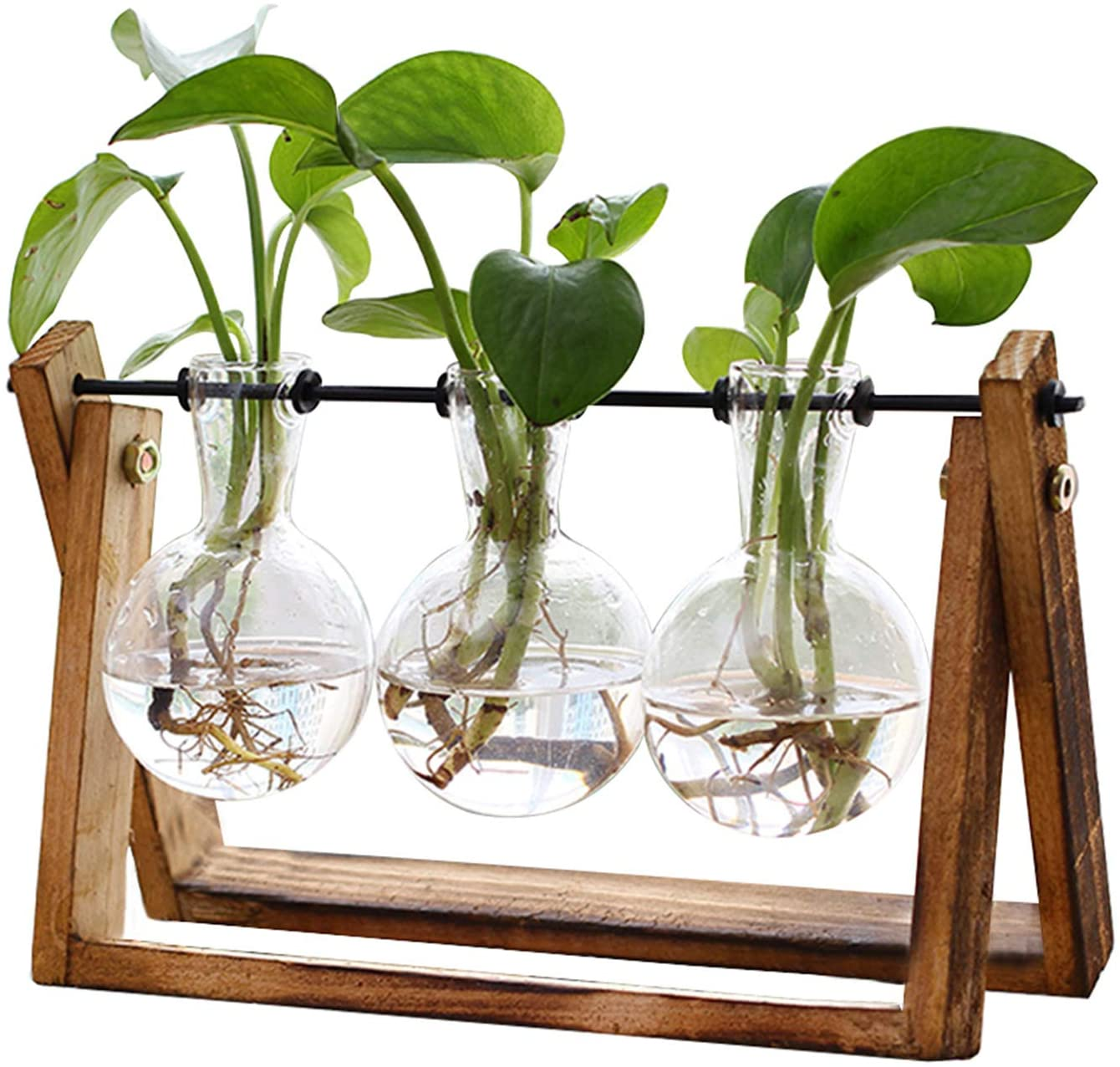 Propogation Jars