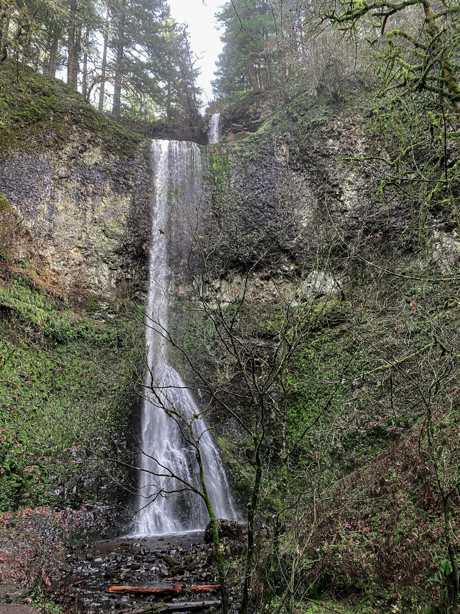 Picture of double waterfall in Silver Falls State Park